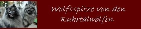 Ruhrtalwölfe Banner